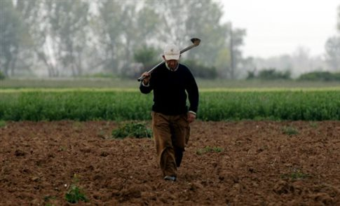 Αποζημίωση σε παραγωγούς λόγω του Ρωσικού εμπάργκο υπόσχεται η κυβέρνηση
