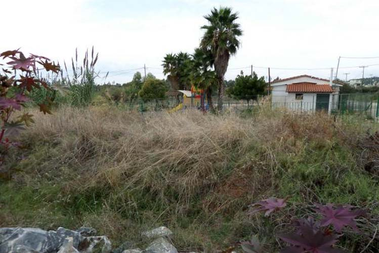 Να καθαρίσουν από χόρτα τα οικόπεδά τους, καλεί τους ιδιοκτήτες ο δήμος Αγιάς