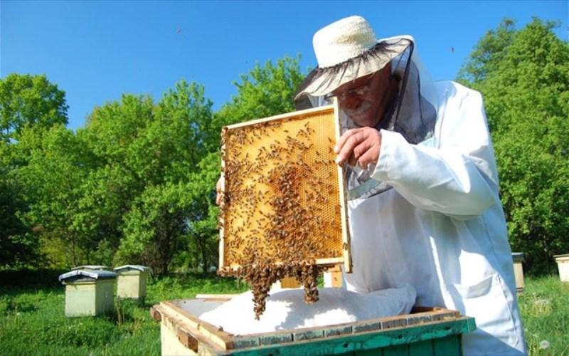 Ενημερωτική ημερίδα στην Ελασσόνα από το Κέντρο Μελισσοκομίας Λάρισας