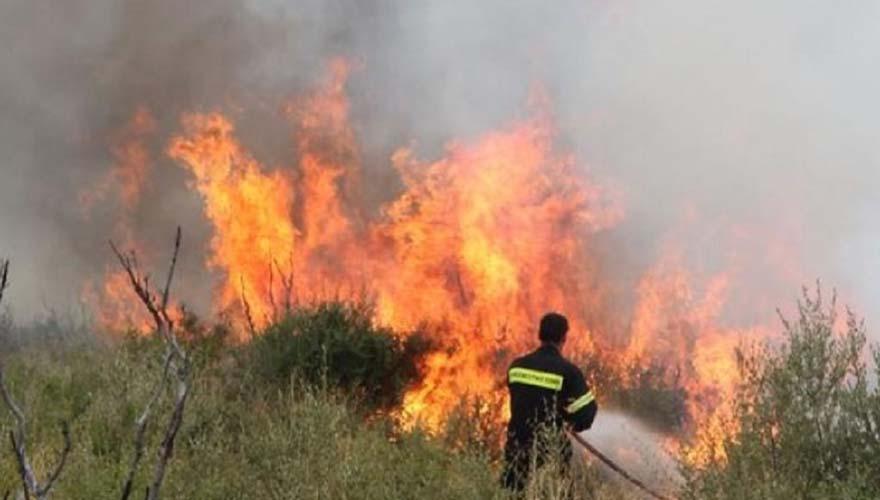 Νέα φωτιά έξω από τη Λάρισα – 9 οχήματα της Πυροσβεστικής στο σημείο