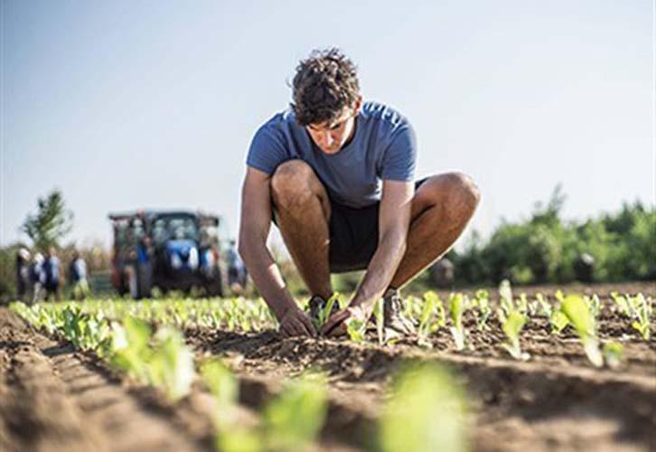 Διαγωνισμός για τον καλύτερο Νέο Αγρότη του 2018