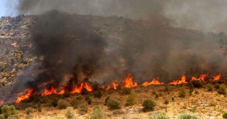 Σε εξέλιξη φωτιά στη Χαλκιδική - Εκκενώθηκε προληπτικά παιδικός σταθμός