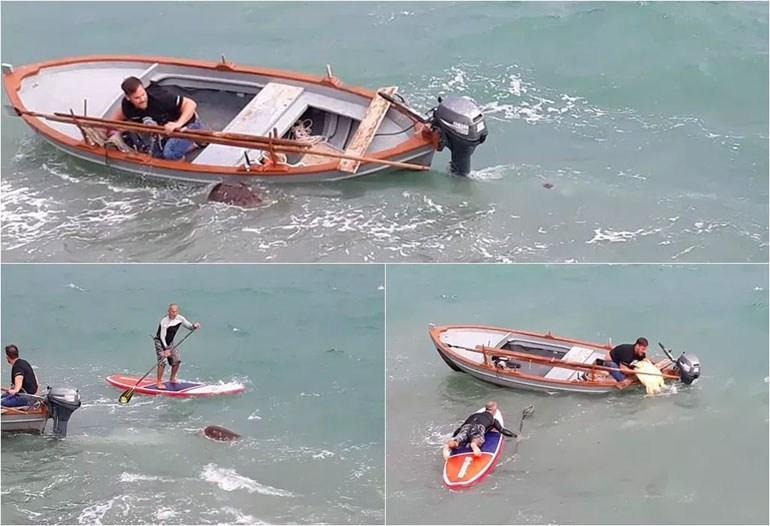 Πάργα: Πάλεψαν με τα κύματα για να σώσουν χελώνα καρέτα – καρέτα