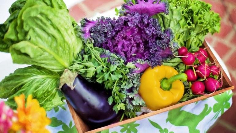 Τα 41 θρεπτικά συστατικά που χρειάζεστε για μια πιο υγιή ζωή