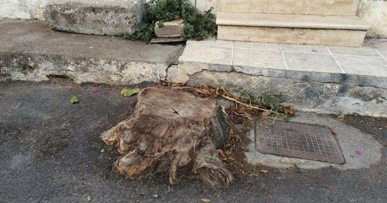 Κρήτη: Παγίδα για τους διερχόμενους οι κομμένοι κορμοί