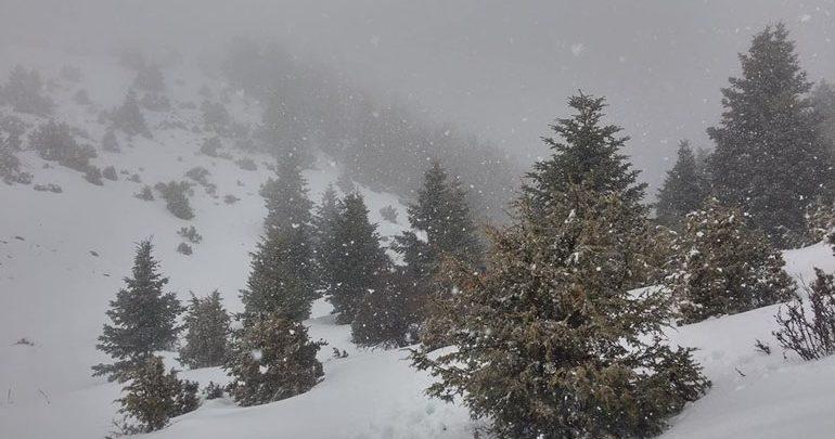 Ταϋγετος: Έπεσε το πρώτο χιόνι σε υψόμετρο 1.500 μέτρα