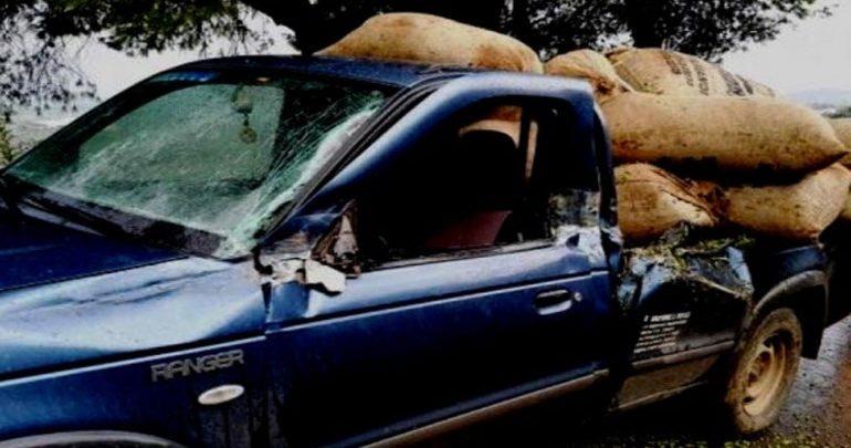Ηράκλειο: Είδαν το μπλόκο του ΤΑΕ και παράτησαν στο δρόμο τις κλεμμένες ελιές
