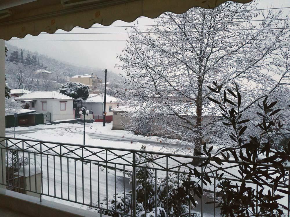 Χιονίζει και πάλι στα Φάρσαλα! - Δείτε φωτογραφίες