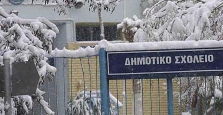 «Πάγωσε» και ο δήμος Τεμπών – Δεν θα λειτουργήσει κανένα σχολείο αύριο Πέμπτη