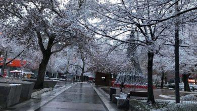 Όμορφες εικόνες από τη χιονισμένη Λάρισα το πρωί της Παρασκευής