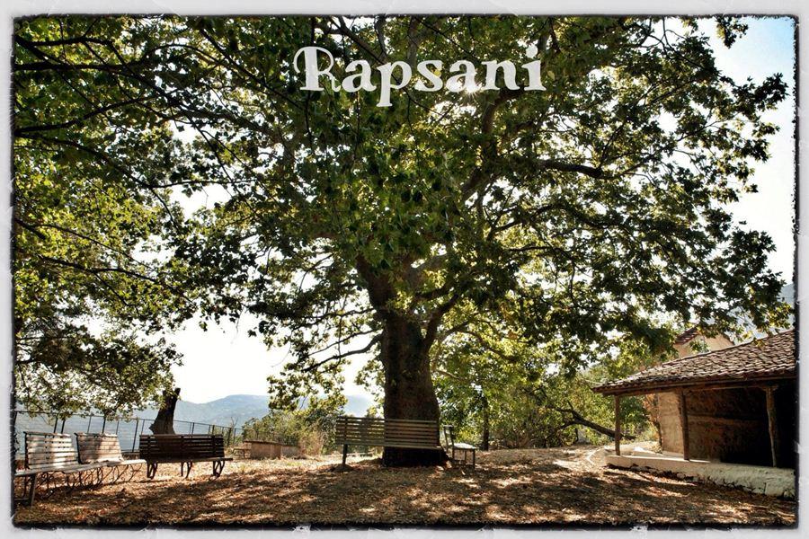 """""""Δένδρινα φύλλα που μιλούν"""" στη Ραψάνη"""