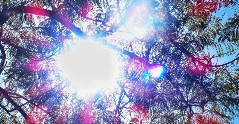 Γενικά αίθριος ο καιρός -Παραμένει ψηλά για την εποχή η θερμοκρασία