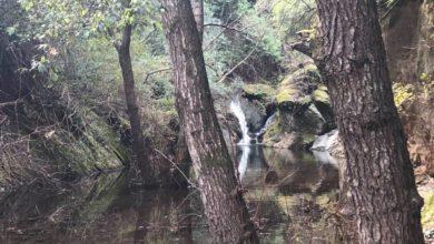 Η άγρια φύση δίπλα στους Λαρισαίους και ο οικισμός «φάντασμα» που προκαλεί δέος - Oδοιπορικό του onlarissa.gr (φωτο-βίντεο)