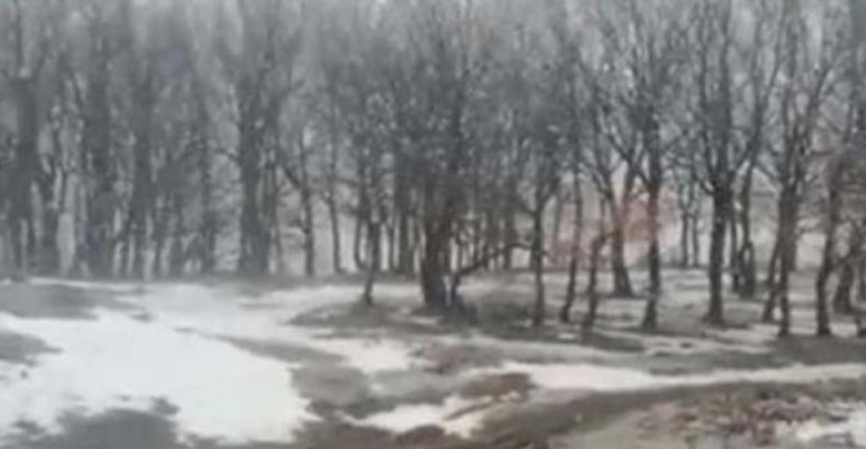 Χιονίζει στα ορεινά των Τρικάλων (βίντεο)