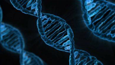Οι επιστήμονες ανοίγουν το «μαύρο κουτί» του καρκίνου