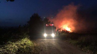 Έκαψαν τα αυτοκίνητα του δασάρχη Περτουλίου - Όλα δείχνουν εμπρησμό
