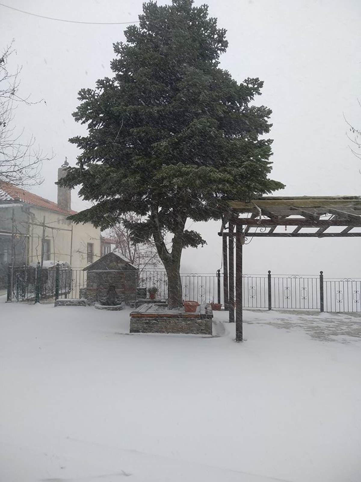 Λάρισα: Έντονη χιονόπτωση στη Σπηλιά (φωτο)