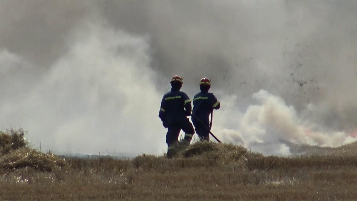 Λάρισα: Ξέσπασε πυρκαγιά κοντά στην Περιφερειακή Τρικάλων - Στο σημείο η Πυροσβεστική (φωτο)